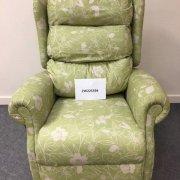 Fern green Single Motor TIS Riser Recliner Chair